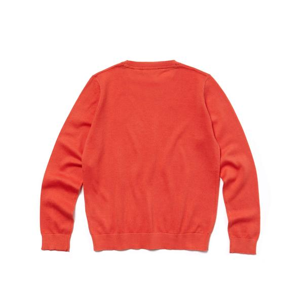 Lacoste Boys' Crew Neck Cotton Jersey Sweater