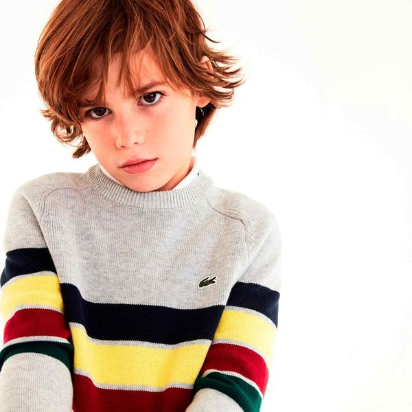 Lacoste Kids' sweater